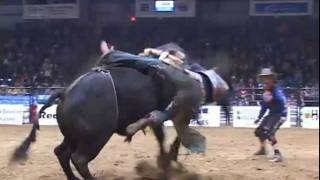 Wild Rides at Swift Current Rodeo