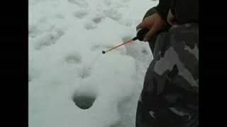 Смотреть онлайн Особенности зимней рыбалки на окуня