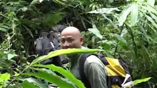 ลุยป่าฮาลาบาลาEP3 คนเบิกทาง ลุยดงทาก Amazon เอเชีย