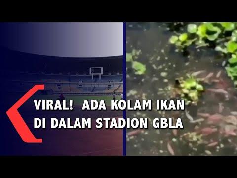 Viral!  Ada Kolam Ikan di Dalam Stadion GBLA