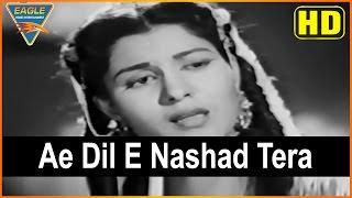 Abe Hayat Hindi Movie  Ae Dil E Nashad Tera Video Song  Premnath  Eagle Hindi Movies