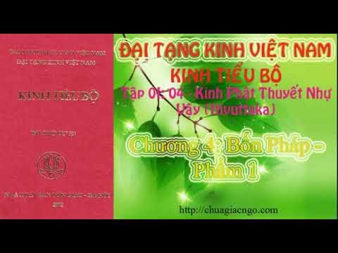 Kinh Tiểu Bộ - 056. Kinh Phật Thuyết Như Vậy - Chương 4: Bốn Pháp - Phẩm 1