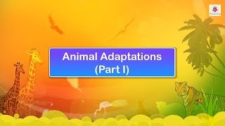 Animal Adaptations | Science Video For Kids | Periwinkle
