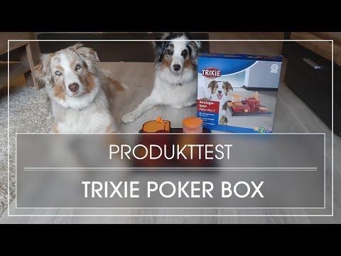 Produkttest: Poker Box 2 von Trixie | Intelligenzspiel für Hunde | Strategiespiel für Hunde