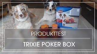 Produkttest: Poker Box 2 von Trixie   Intelligenzspiel für Hunde   Strategiespiel für Hunde