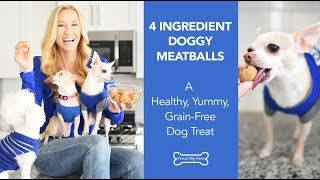 4 Ingredient Doggy Meatballs: A Grain-Free Dog Treats Recipe | Proud Dog Mom