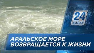 Аральское море возвращается к жизни
