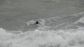 Шторм человек в море  Слабонервным не смотреть !