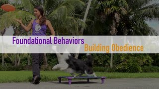 Foundational Obedience