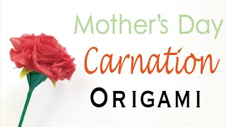 How To Make Paper Carnation Free Video Search Site Findclip