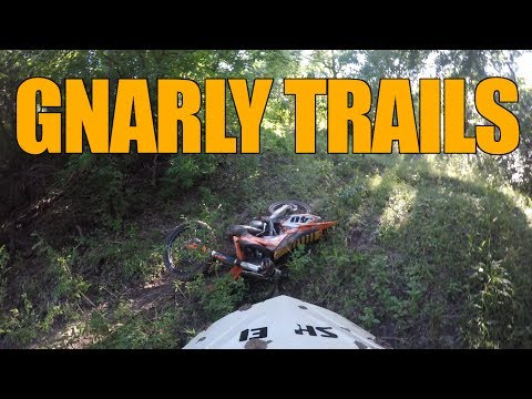 I Try Riding Trails and Crash Instantly + Gnarly Whooped-Out Trail | Zars Ranch