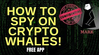 SPY on CRYPTO Whales NOW for FREE! Feat. Crypto Whale Watching App