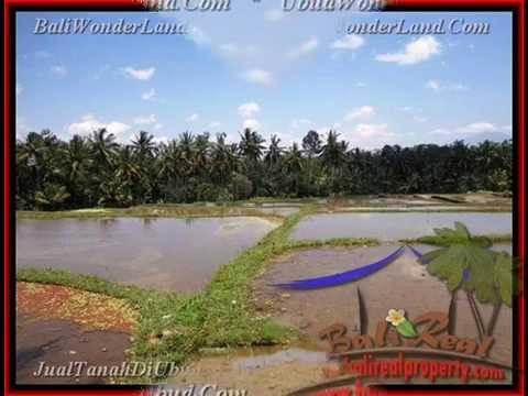 8.000 m2 Lahan  View Sawah, Sungai, Gunung di Sentral Ubud TJUB441