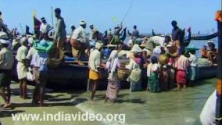 Chakara - Bountiful catch for the fishermen