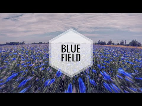 fpv--blue-field--emax-hawk-5-freestyle