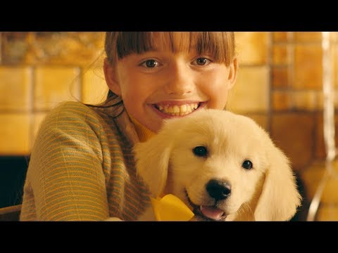 Download Marshmello ft. Bastille - Happier (Official Music Video) HD Mp4 3GP Video and MP3