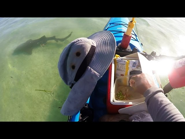 Key West Kayak Cooking - Mangrove Snapper Ceviche w/Sharks - Cooking On The Water.
