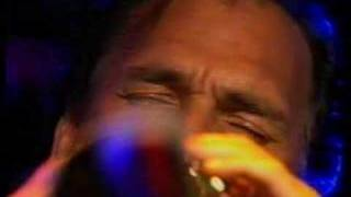 The Black Sorrows - Hold It Up To The Mirror [Live 1989]