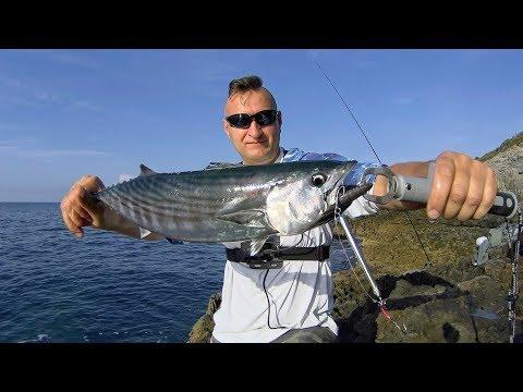 Kystfiskeri efter tun i Montenegro
