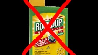 How To Make Non-Toxic Weed Killer (Alternative To Round-Up) DIY