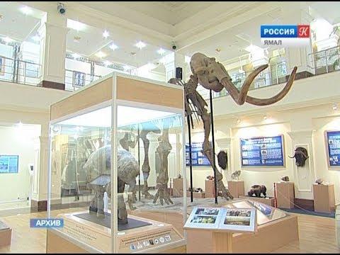 Детям и студентам разрешат неограниченное бесплатное посещение музеев
