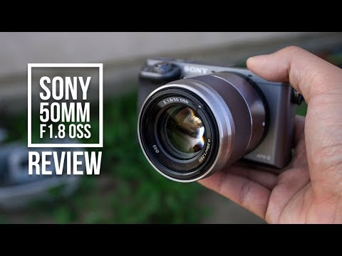 Sony 50mm F1.8 OSS Review (2017) | Sony a6000 Image Samples