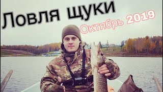 Ловить щуки в ленинградской области на озере