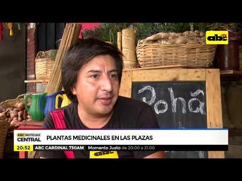 Plantas medicinales en las plazas