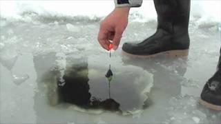 How To Fishing On Ice - Pike Fishing On Ice - A Csuka Lékhorgászata