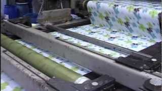 Textiles Dyeing And Printing (Preview)