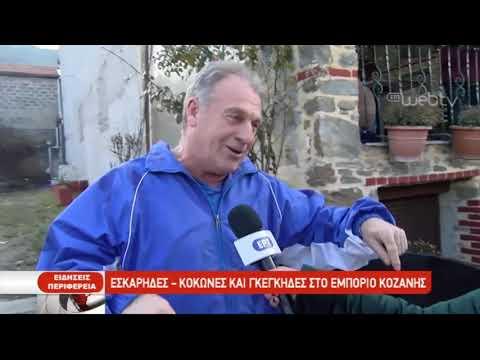 Οι Κοκόνες και οι Γκέγκιδες της Πτολεμαίδας | 3/1/2019 | ΕΡΤ
