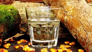 Зерновой самогон по пропорциям от Джим Бим (Jim Beam)