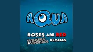 Roses Are Red (Original Version)