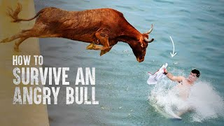 How to Survive a Charging Bull