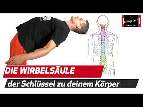 Rückenschmerzen Niere