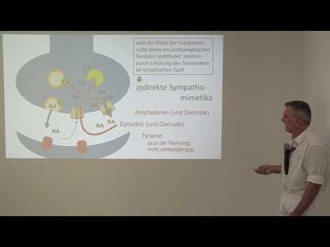 Aronia und Hypertonie