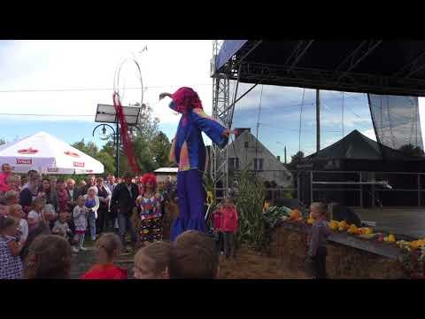 Pokaz cyrkowy na dożynkach gminnych w Rokitach