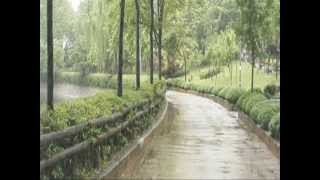 May Nasr    Listen To The Falling Rain cover  Jose Feliciano with lyrics)