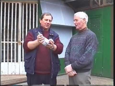 , title : 'Video 166: Pigeon Loft Visits In 1998
