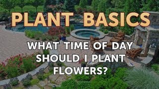 What Time of Day Should I Plant Flowers?