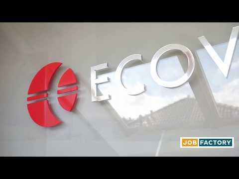 JOBFACTORY: Ausbildung bei der ECOVIS Europe AG