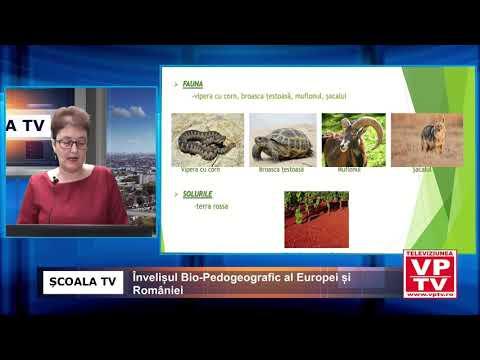 Învelișul Bio-Pedogeografic al Europei și României