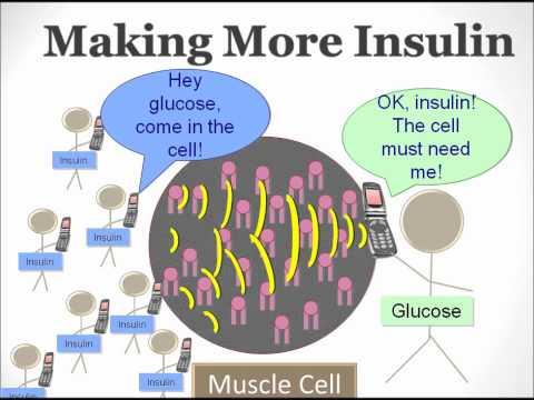 Insulin elektronischer Stift