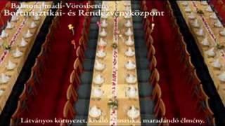 preview picture of video 'Borok Háza Balatonalmádi'