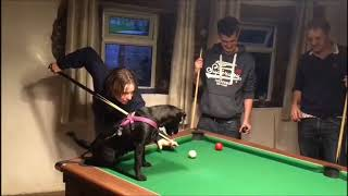 New Sport Alert - Pool With Patterdale!