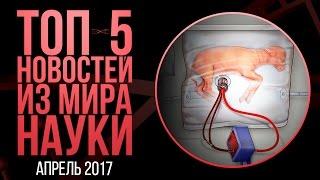 Апрель  2017. ТОП-5 новостей из мира науки.