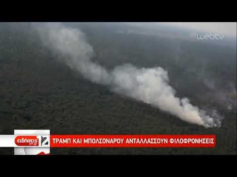Ο Μπολσονάρου αποδέχεται βοήθεια για τις φωτιές στον Αμαζόνιο | 28/08/2019 | ΕΡΤ