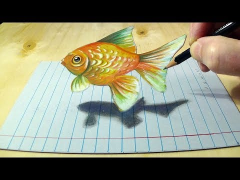 drawing goldfish illusion by sandor vamos