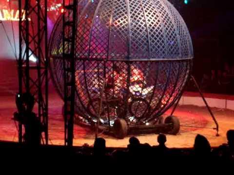 une sortie au cirque…