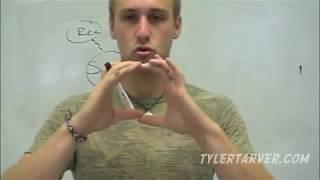 Geometry: 6-4 Properties Of Special Parallelograms